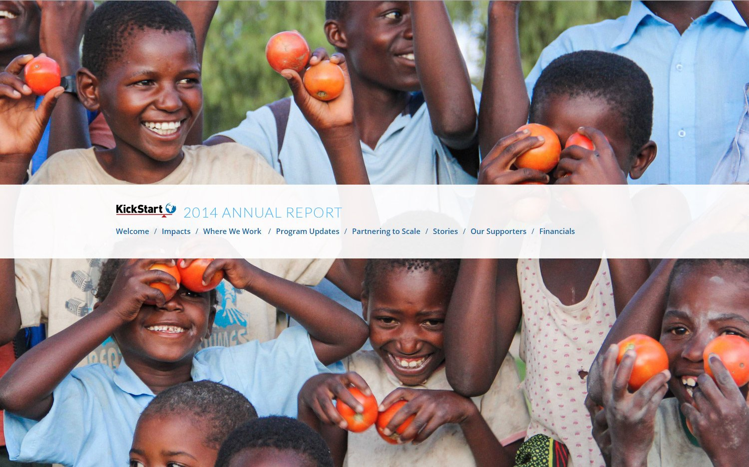 Annual Report website built with WordPress