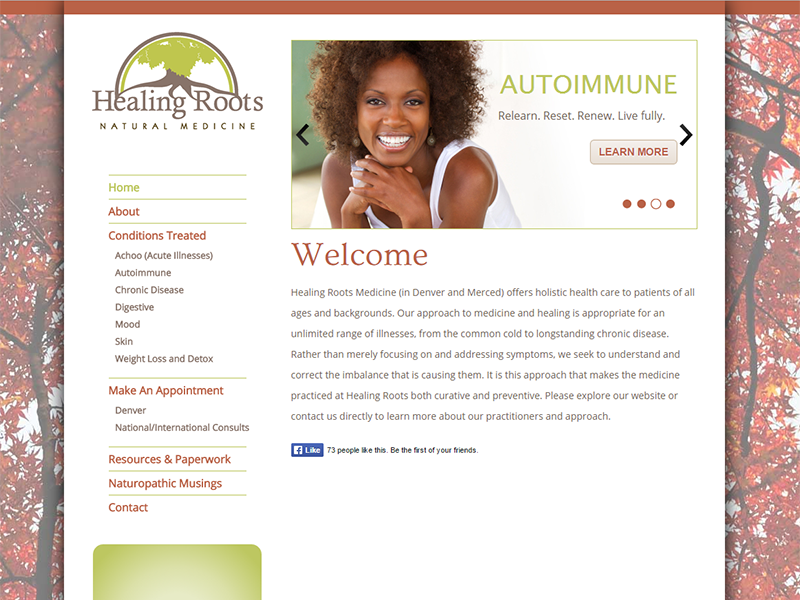 Naturopath WordPress web design